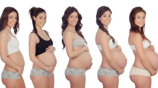 Memoirs of a pregnancy