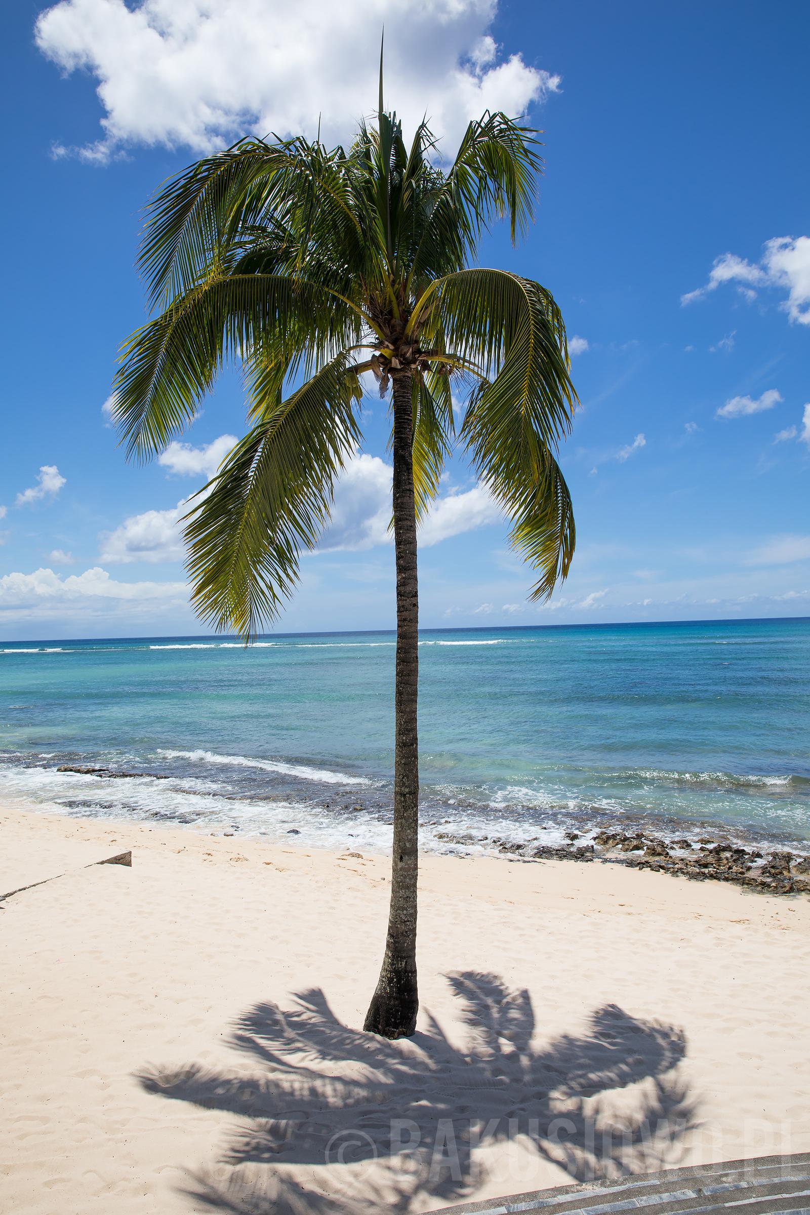 mauritius-le-meridien-photos-25